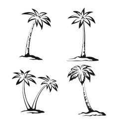 Palm Trees Black Pictograms vector