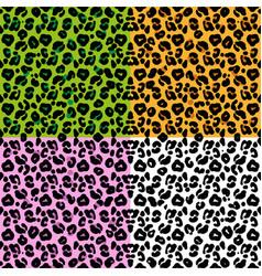 set patter leopard skin vector image