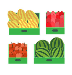 watermelon and melon fruits in container vector image