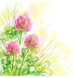 Background with flowers of clover vector image