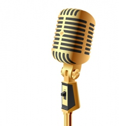gold microphone vector image vector image