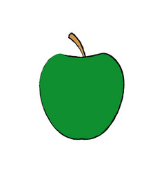 green apple fruit with green leave vector image