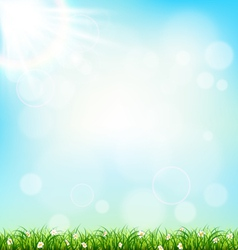Green grass lawn with chamomiles on blue sky vector