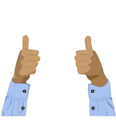 two hands with thumbs up vector image