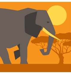 African ethnic background with elephant vector