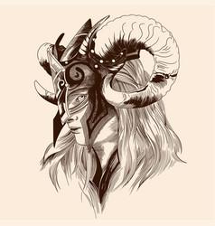 amazon viking girl vector image