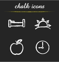 Daily timetable icons vector