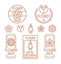 flower lineart set vector image