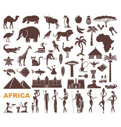 Traditional symbols africa vector