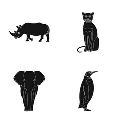 black rhinoceros panther wild cat african animal vector image vector image