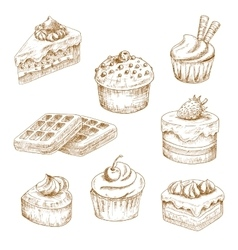 Delicious bakery and pastries sketches vector