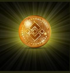 binance golden coin vector image