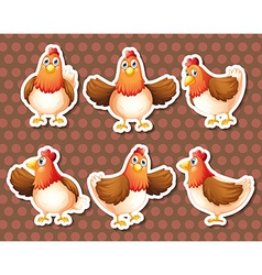 Chicken vector image