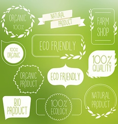 Collection of green labels and badges for organic vector