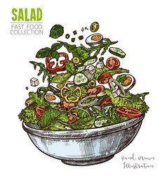 Delicious salad with eggs feta cheese vegetables vector