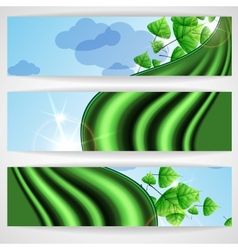 Eco Green Background With Leaves vector image