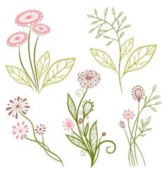 Flowers meadow vector