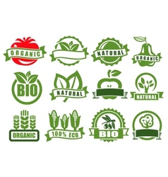 green emblems of eco vector image