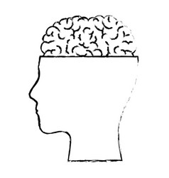 human face silhouette with brain exposed in black vector image