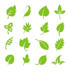 Leaf icon set Fresh green leaves various shapes vector