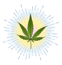 Marijuana green leaf with bright colorful shining vector