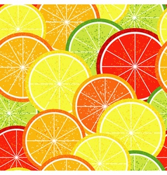 Seamless citrus pattern vector