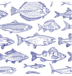 seamless pattern with fish hand drawn with contour vector image