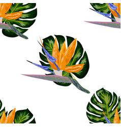 Strelitzia pattern tropical flower blossom vector