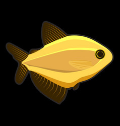 yellow fish on black background vector image