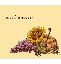 Autumn fruits background Harvest festival leaflet vector