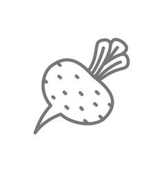 Beet beetroot vegetable line icon vector