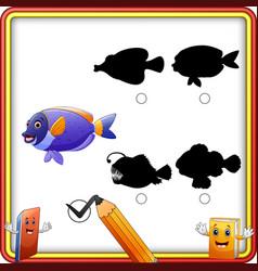 Find the correct shadow cartoon funny fish educa vector