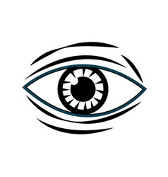 human eye vision optical design image vector image