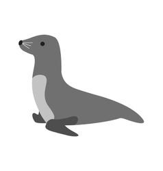 Sea Dog vector image
