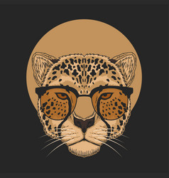 cheetah eyeglasses vector image