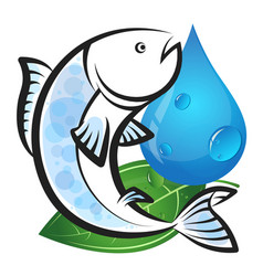 fish with water drop and green leaf vector image