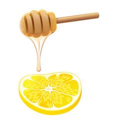 honey lemon vector image