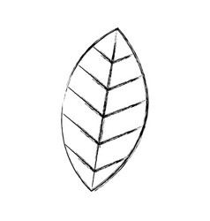 leaf plant isolated icon vector image vector image