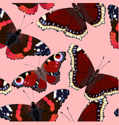 pattern with high detailed vivid butterfly vector image