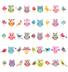 set of birds and owls isolated on white vector image