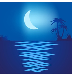 Tropical beach at night vector