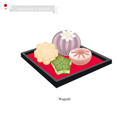 Wagashi Traditional Japanese Confections vector