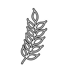 Weath leafs isolated icon vector
