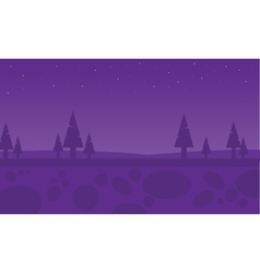 Silhouette of spruce at night vector image vector image