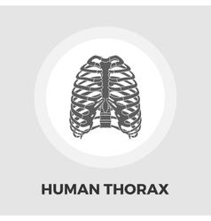Human thorax flat icon vector image vector image