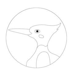 Bird woodpecker head vector