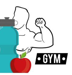 bodybuilder fitness fruit water diet vector image