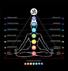 Chakras system human body vector