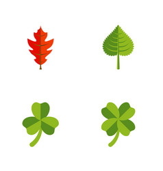 Flat icon maple set of hickory frond leaf and vector