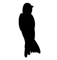 Swallow Bird Silhouette vector image vector image